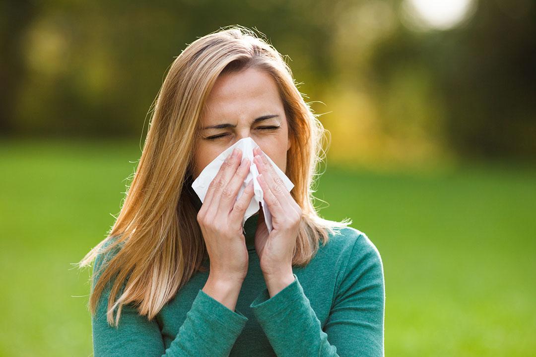 Alimentos que ayudan a reducir los síntomas de la alergia al polen