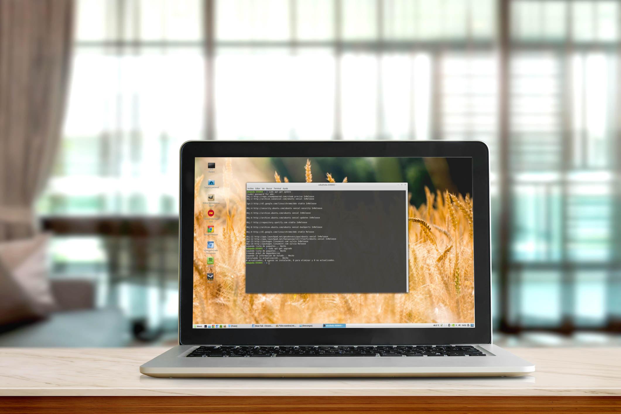 Los comandos de Linux imprescindibles para principiantes
