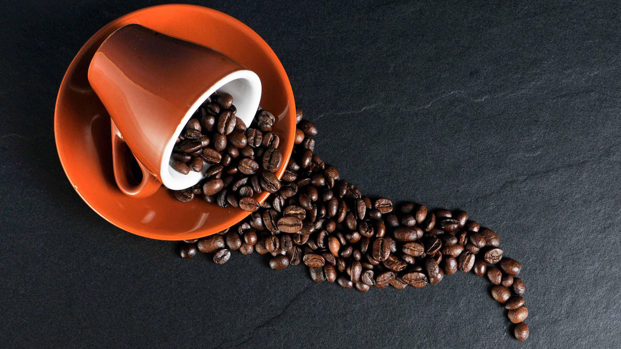 Guía para comprar una cafetera: cápsulas vs. goteo, guía y recomendaciones