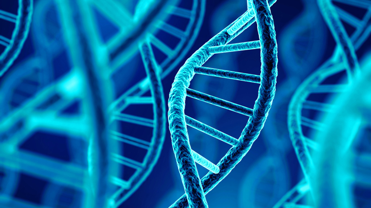 Una prueba científica te dice lo que vas a vivir a partir de tu ADN