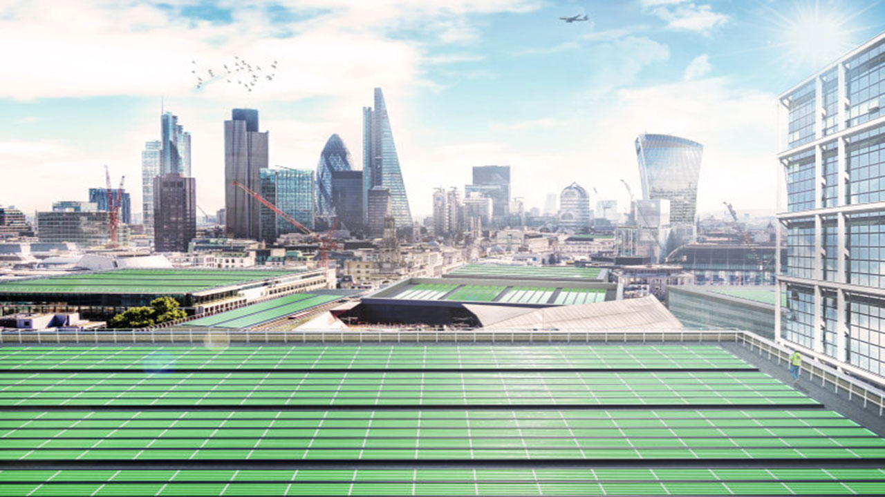 Este invento a base de plantas eliminará contaminación y producirá alimentos microscópicos