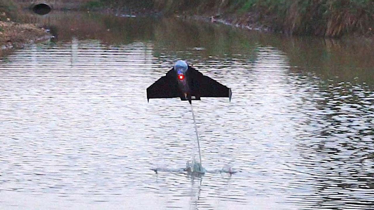 Este pez robot puede saltar desde el agua y después volar