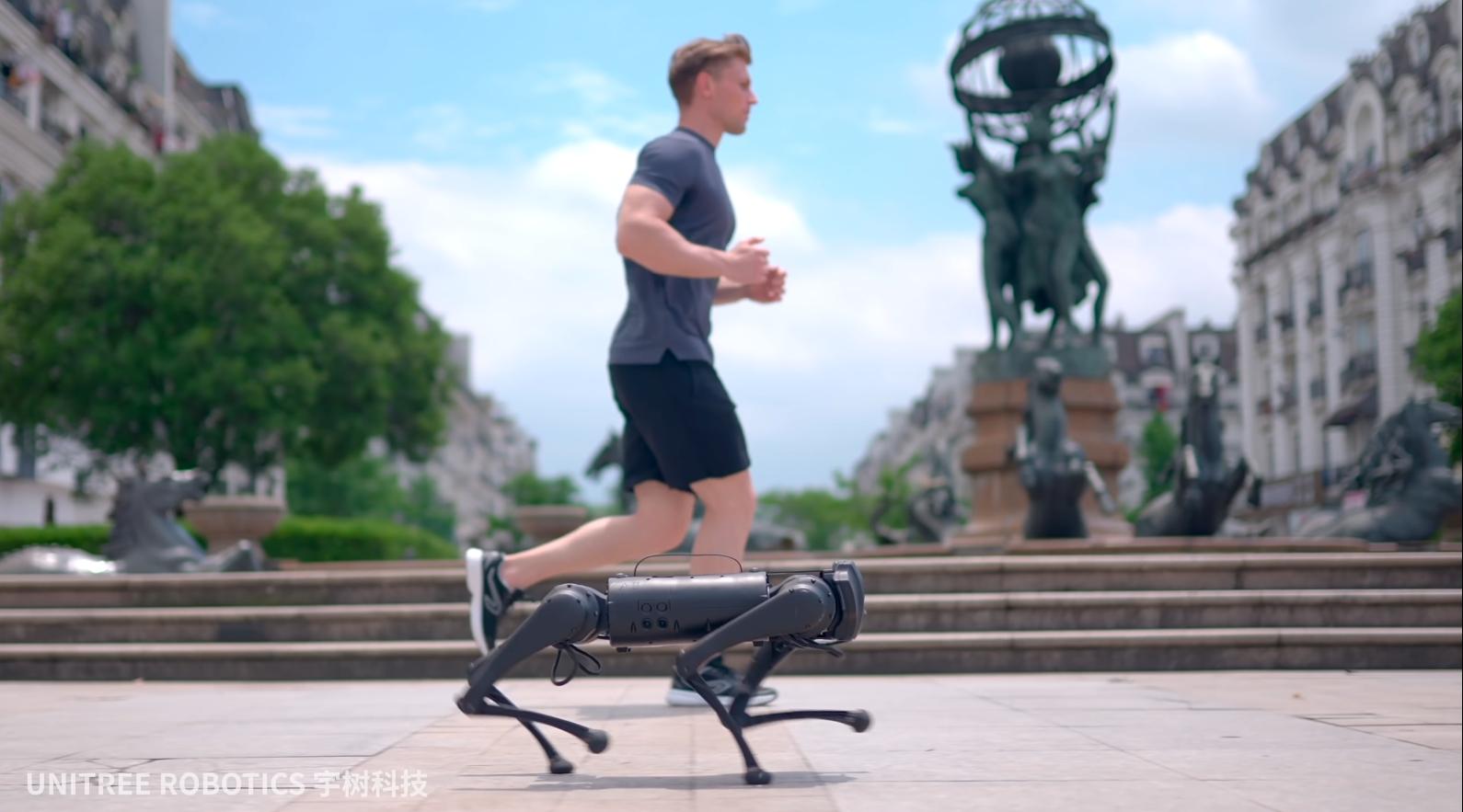 Unitree Go1, el perro robot barato que te acompaña a hacer running o lleva la compra y solo cuesta 2.300 euros
