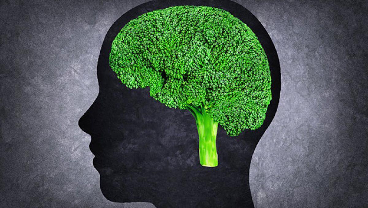 Estos son los mejores alimentos para tu cerebro y tu memoria