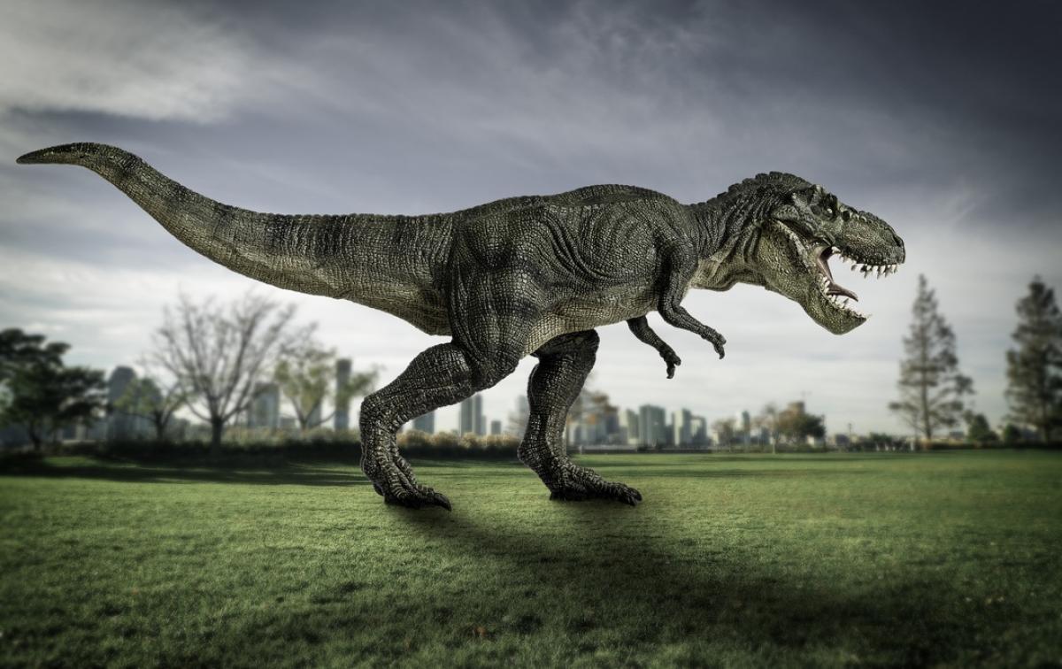 Mitos Del Tyrannosaurus Rex Como Eran Realmente Los T Rex Life Computerhoy Com Una de las partes más espectaculares del tiranosaurio es su cabeza. mitos del tyrannosaurus rex como eran