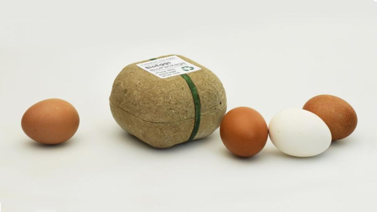 packaging ecologico per le uova