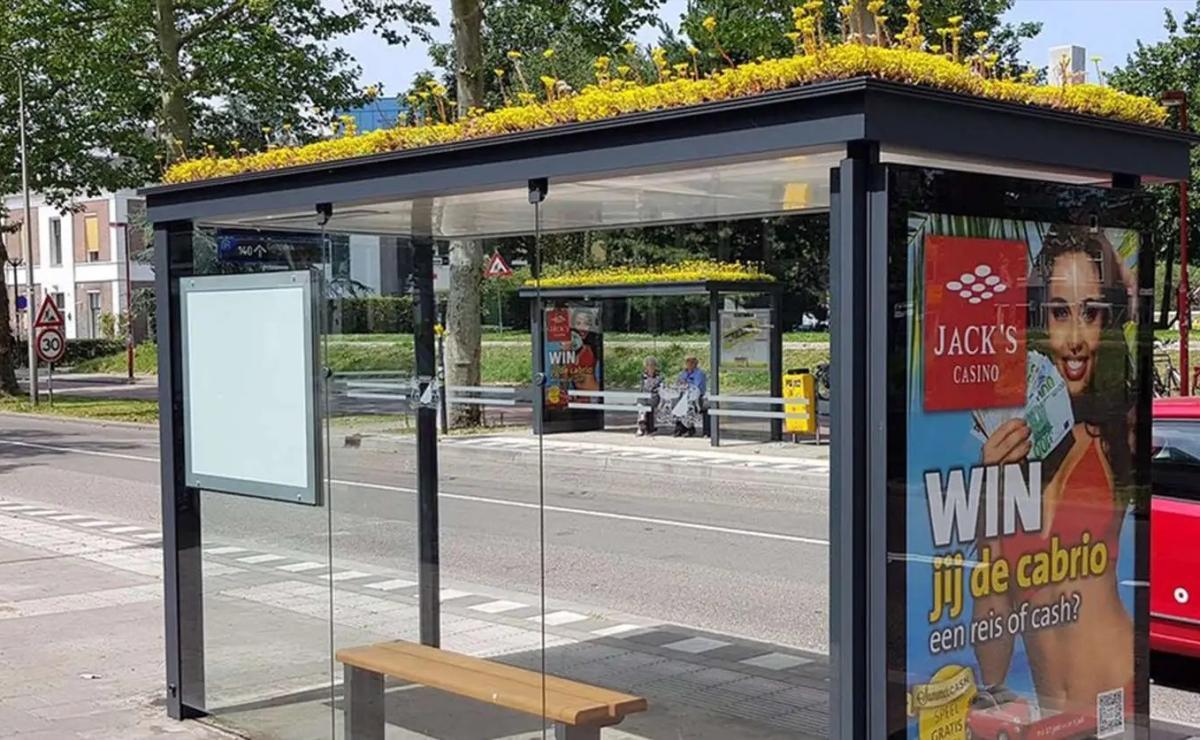 Cientos de paradas de autobús cubiertas con plantas, para ayudar a las abejas
