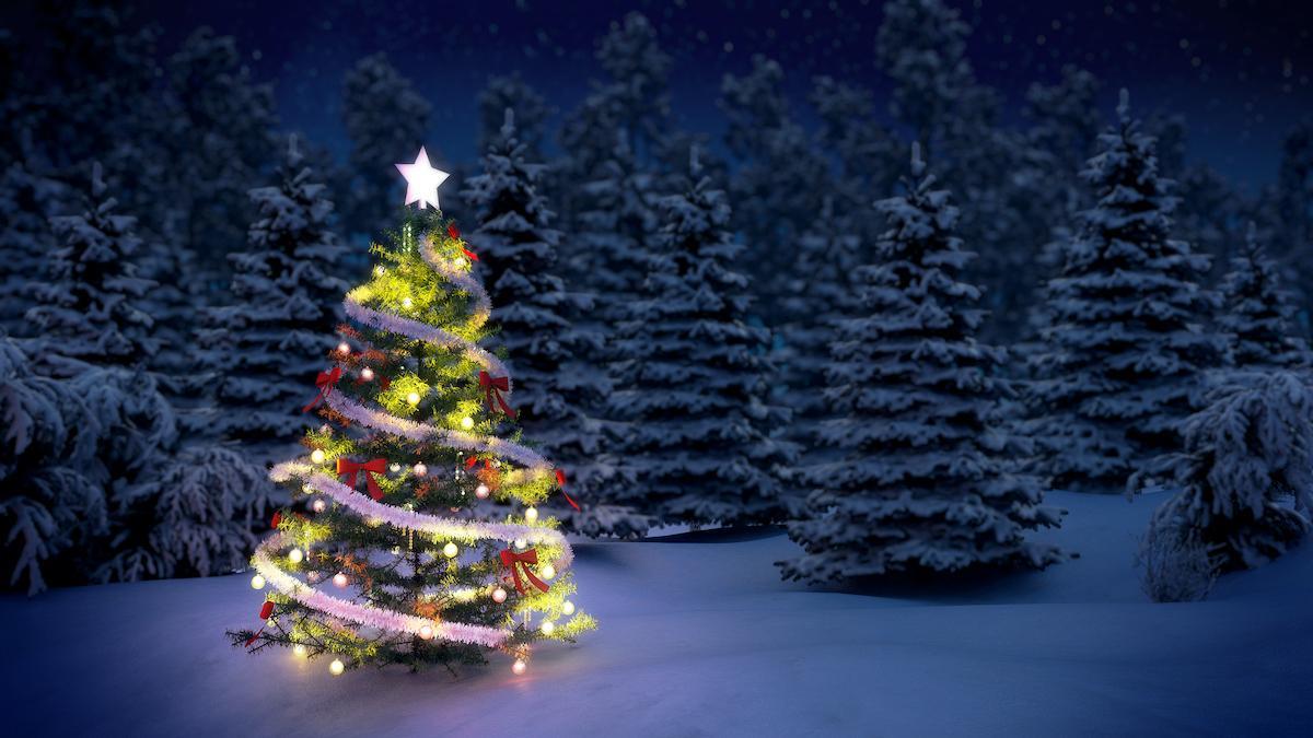 Por qué ponemos un árbol en Navidad? | Life - ComputerHoy.com