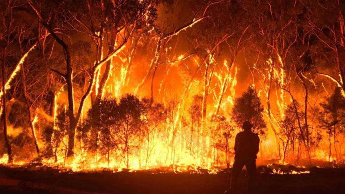 Resultado de imagen de incendios de australia