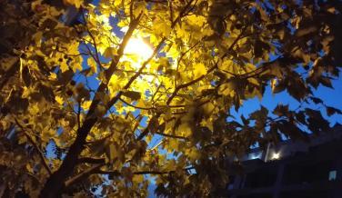 Fotografía nocturna 2