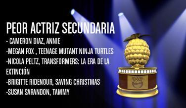 Nominados premios Razzie 2015