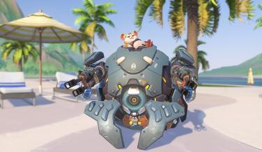 Hammond Overwatch