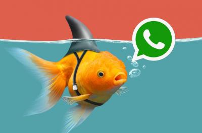 Bulos sobre WhatsApp