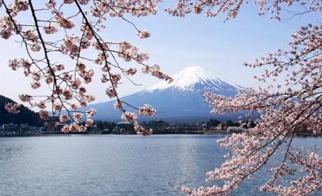Monte Fuji. Google Street View