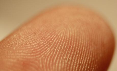 ¿Una pantalla que reconoce huellas digitales?