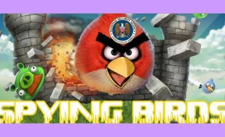 La web de Angry Birds, hackeada. Durante unos minutos se llamó Spying Birds