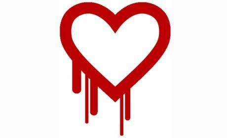 Heartbleed, un bug que pone en riesgo todo Internet