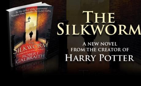 Amazon y la editorial Hachette se ensarzan en una disputa por el precio de los ebooks. Peligra el próximo libro de J K Rowling con el alias Robert Galbraith, The Silkworm.