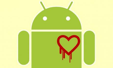 Heartbleed comprobación