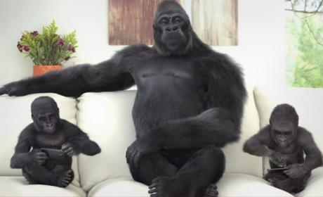 Project Phire, la evolución de la pantalla Corning Gorilla Glass más dura que el zafiro.