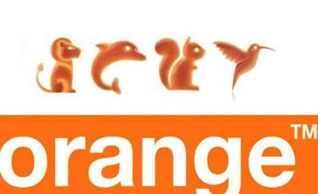 Colibrí: tarifa de Orange para navegar gratis en Facebook y Twitter