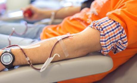 La UE justificaría la prohibición de donar sangre a los gays