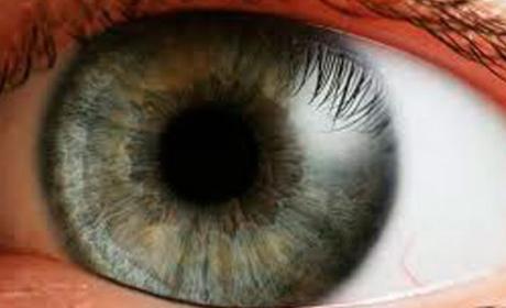 Crean un programa para controlar el ordenador con los ojos