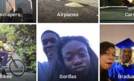 negros gorilas google fotos
