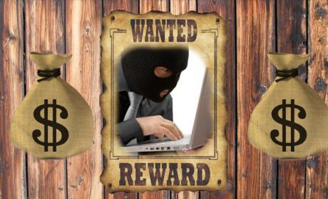ashley madison hackers recompensa