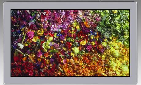 Japan Display lanza la primera pantalla de 17 pulgadas 8K