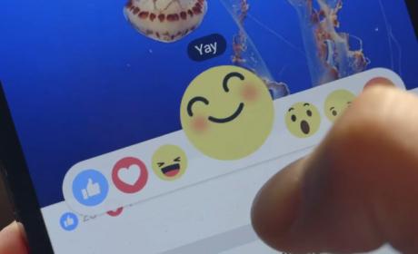 """Facebook lanza Reacciones, el nuevo botón """"Me gusta"""""""