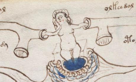 El códice Voynich, el libro más misterioso del mundo, se copiará en Burgos
