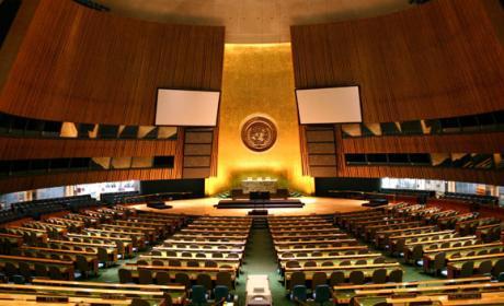 Naciones Unidas garantiza internet libre y abierto