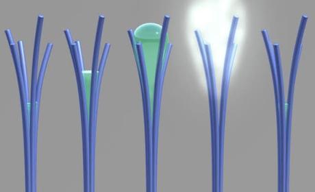 Nano varillas que expiden agua