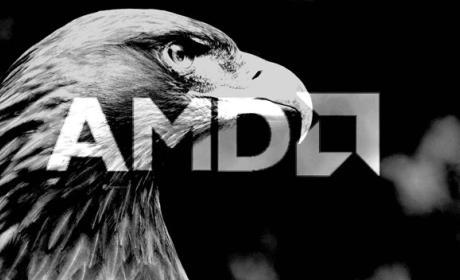 Las APUs 'Gray Hawk' de AMD llegarán al mercado en el 2019