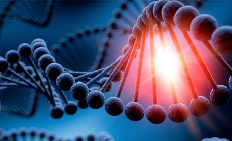 CRISPR, la revolución genética que cambiará nuestras vidas