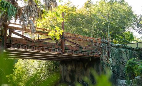 Disney abrirá un parque temático de Avatar en 2017