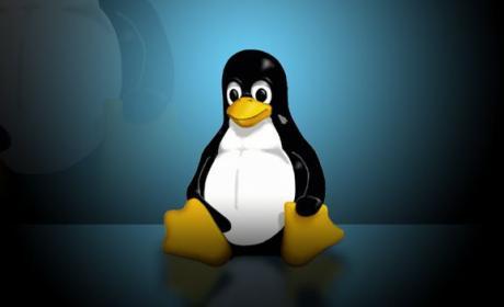 Distros de Linux con más futuro