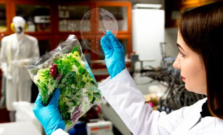 envase comida biodegradable