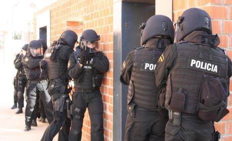 bulo whatsapp policia ataque terrorista