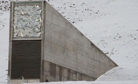 Este búnker del Ártico aspira a guardar para siempre copias de seguridad digitales