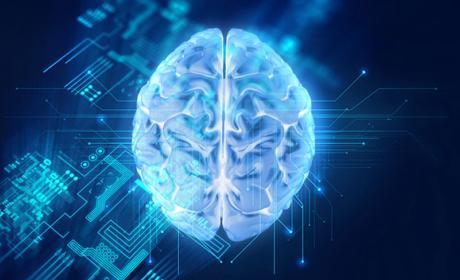 arm procesadores cerebro