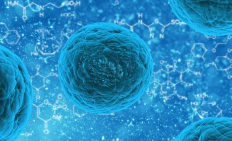 cura Metástasis cáncer en Células Madre