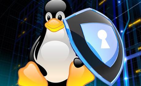 Nuevos fallos de seguridad en el sistema operativo Linux