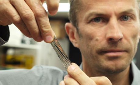 Científicos consiguen capturar 330 TB de información en un cartucho