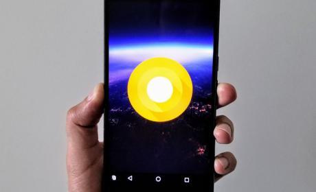 Una publicación en Twitter podría haber desvelado el lanzamiento al público del nuevo Android O
