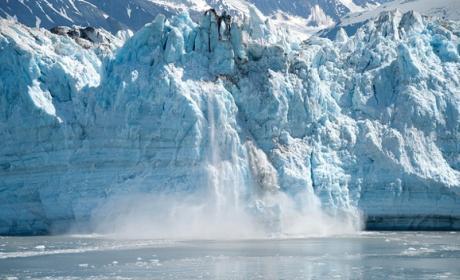 Un Glaciar se desprende y revela un ecosistema con mucha vida.
