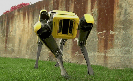 perro robot spotmini boston dinamics