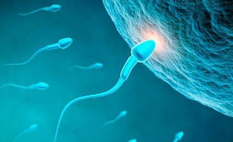 infertilidad contaminación