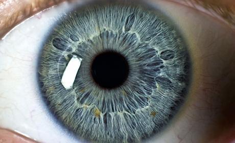El LG G7 contará con un avanzado escáner de iris